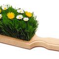 Здравословното почистване с натурални продукти