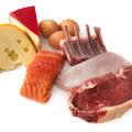 Протеини от животински произход