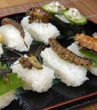Суши с насекоми